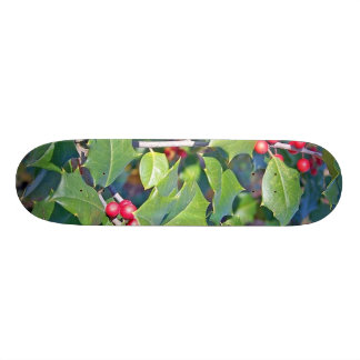 holly berrie nature skate boards
