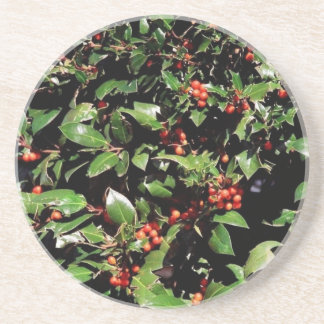 Holly & Berries Coaster