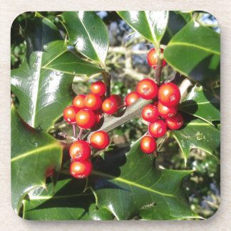 Holly Berries On Holly Tree Drink Coasters