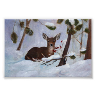 Holly Berry Deer Poster