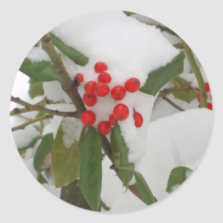 Holly in Snow Classic Round Sticker