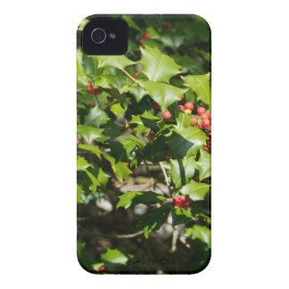 Holly Jolly Holly iPhone 4 Cover
