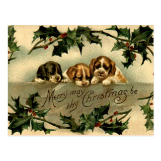 Holly Puppies Postcard