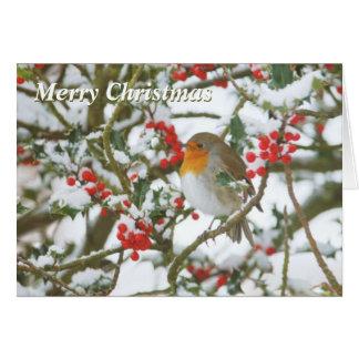 Holly & Robin Christmas Card
