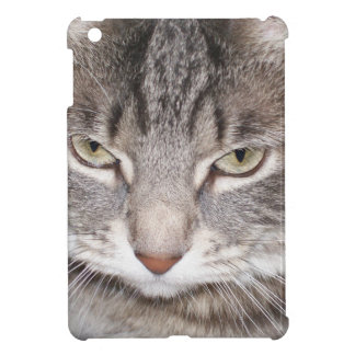 Holly the Cat Cover For The iPad Mini