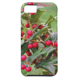 Holly tree branch with red berries iPhone 5 case