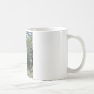 holly tree in New Forest Coffee Mug