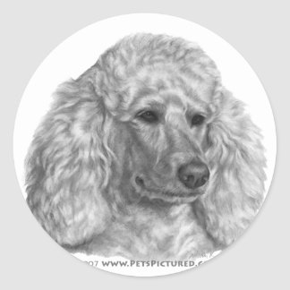 Holly, White Poodle Round Sticker