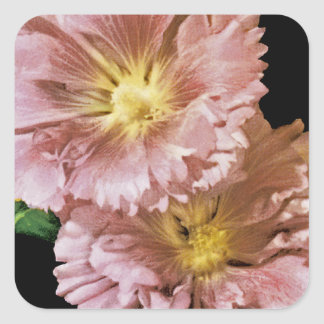Hollyhock Vintage Seed Packet Square Sticker