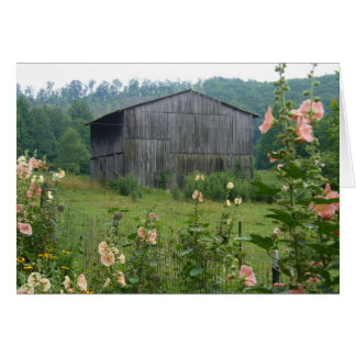 Hollyhocks and barn card