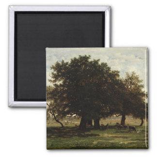 Holm Oaks, Apremont, 1850-52 Magnet
