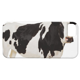 Holstein cow (Bos taurus) Barely There iPhone 5 Case