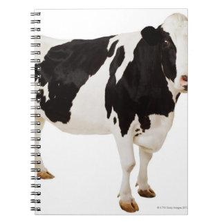 Holstein cow (Bos taurus) Spiral Notebook