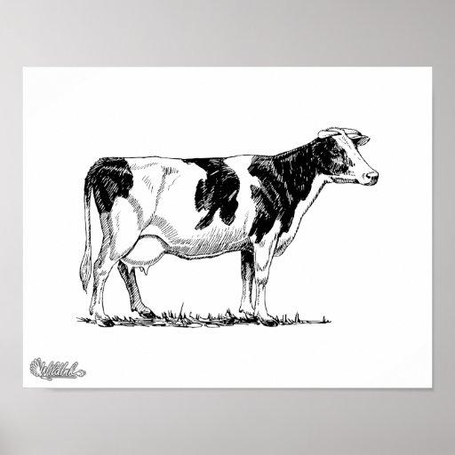 Holstein Cow Poster