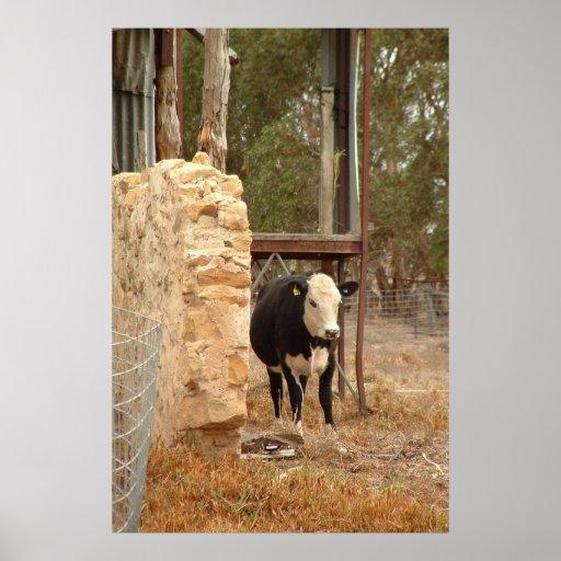 holstein cow print nb