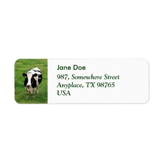 Holstein cow return address label