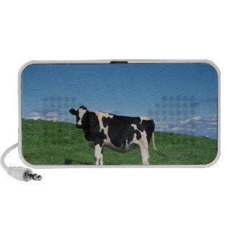 Holstein cow standing in field, Bekkai-Machi, Speaker