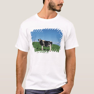 Holstein cow standing in field, Bekkai-Machi, T-Shirt