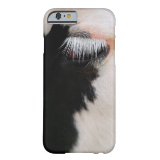 Holstein cow's face, close-up of eye barely there iPhone 6 case