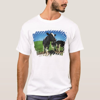 Holstein cows in a field T-Shirt