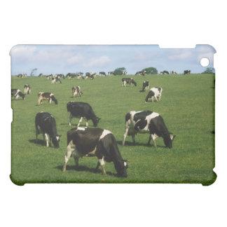 Holstein-Friesian cle, Ireland iPad Mini Covers