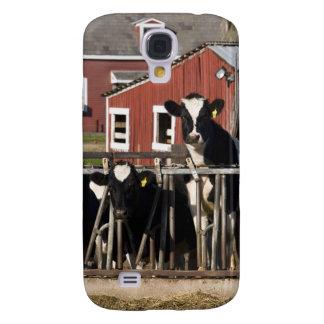 Holsteins at Boggy Meadow Farm in Walpole, New Galaxy S4 Case