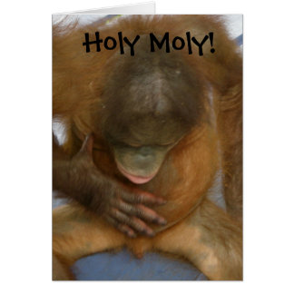 Holy Moly Funny Vasectomy Stationery Note Card
