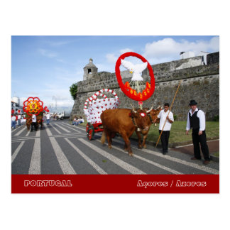 Holy Spirit festivities Postcard
