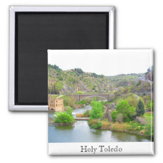 Holy Toledo, Spain Magnet