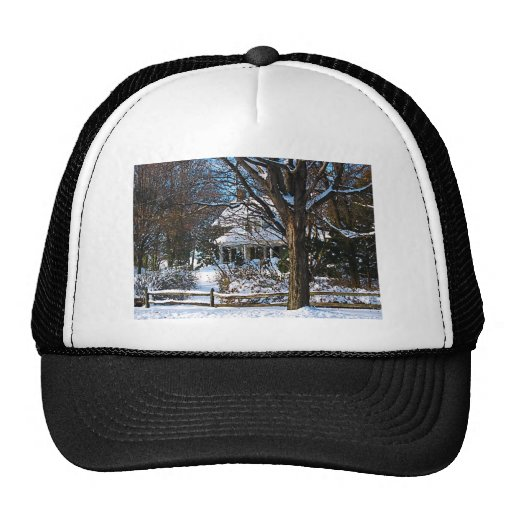 Home After the Snowstorm Mesh Hats