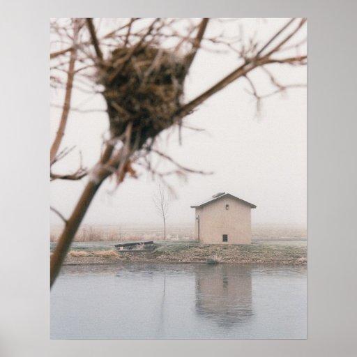 Home Bird's Nest Print