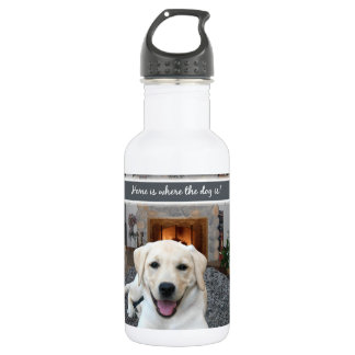 Home is where the dog is 532 ml water bottle