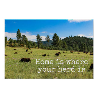 Home is Where Your Herd Is - Bison Poster