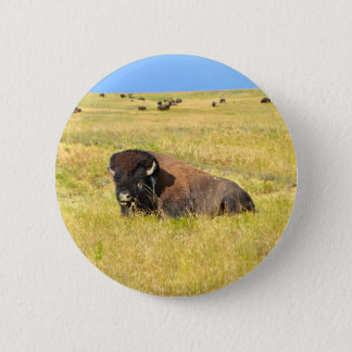 Home On The Range Button