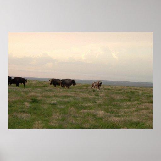 """Home On The Range-Western Kansas"" Poster"
