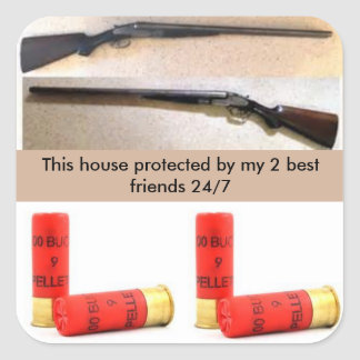 Home Protection sticker 12 guage and 00 buckshot