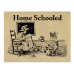 Home Schooled Clothing and Gifts Postcard