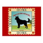 Home Sweet Home - Husky Postcard