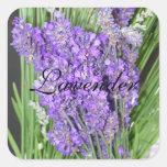 Homegrown Lavender Plant Label Square Sticker