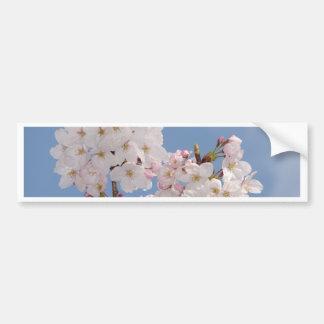 Homemade work of cherry tree bloom bumper sticker