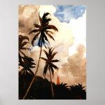Homer - Palm Trees, Bahamas Poster