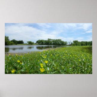 Homestead Pond Poster