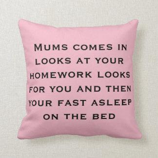 homework sucks cushion