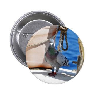 Homing Pigeon Pinback Button