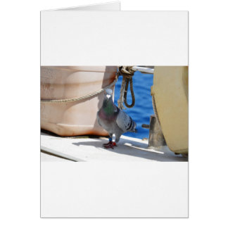 Homing Pigeon Card