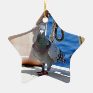 Homing Pigeon Ceramic Star Decoration
