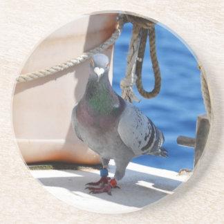 Homing Pigeon Coasters