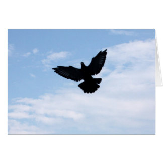 Homing Pigeon Coming Home Notecard Note Card