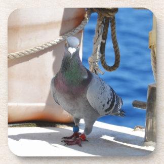 Homing Pigeon Beverage Coasters