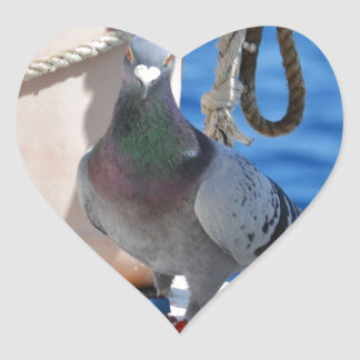 Homing Pigeon Heart Sticker